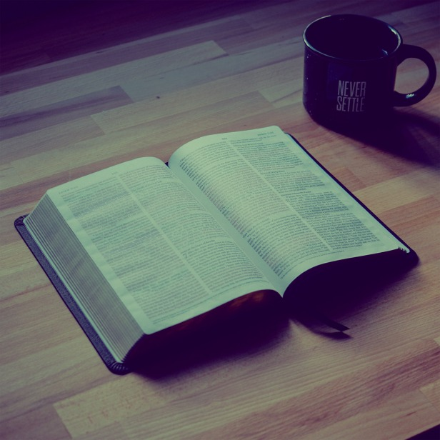 what_is_your_favourite_book_of_the_bible-square-blank-Square